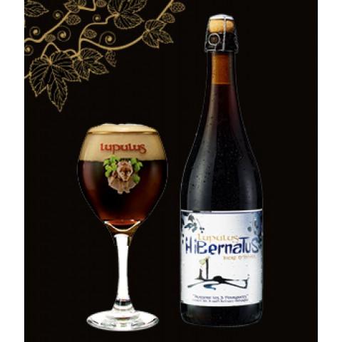 Bouteille de bière LUPULUS HIBERNATUS 9°